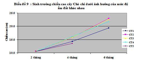 15-04-02 Cho chi song da1