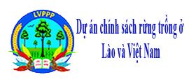 Dự án chính sách rừng trồng ở Lào và Việt Nam