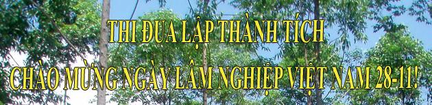 Thi đua lập thành tích chào mừng ngày Lâm nghiệp Việt Nam